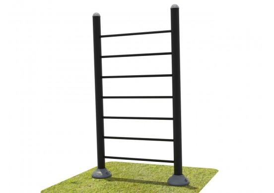 Single Station Vertical Ladder