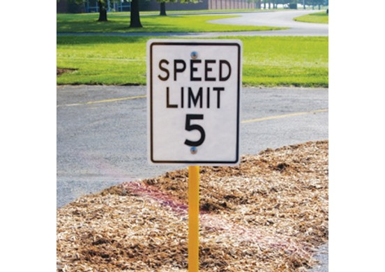 Trike Track Speed Limit Sign with Stand
