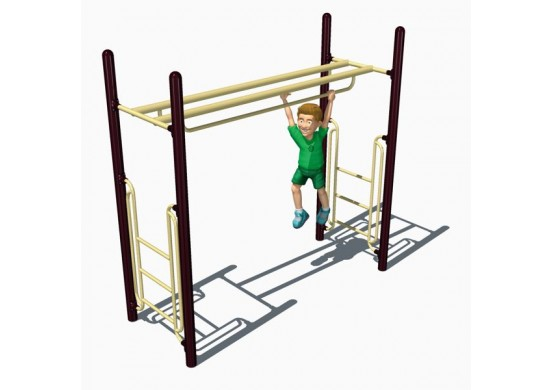 Double Parallel Bars Overhead Climber