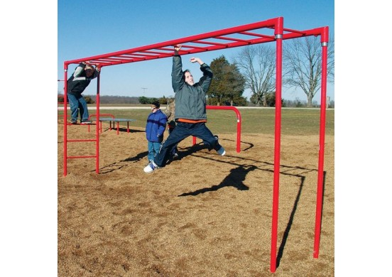 Horizontal Fitness Ladder