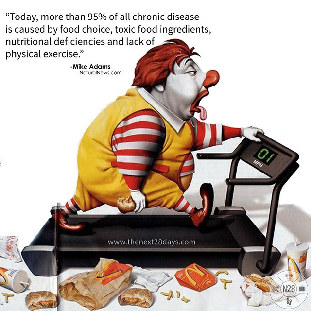 McDonalds Fat